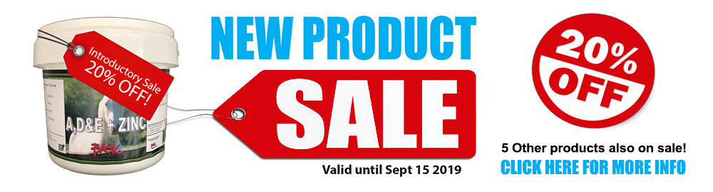New Product Sale Flyer- 20 percent off